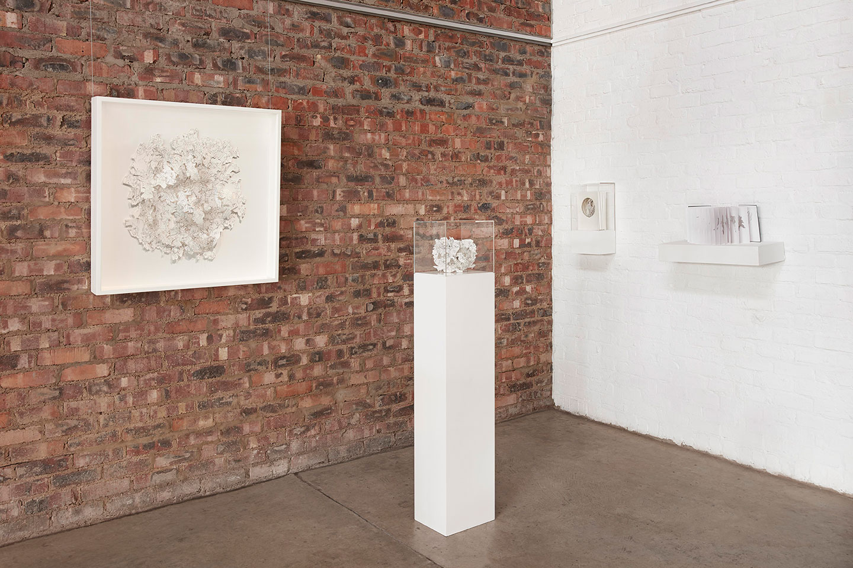Odette Graskie Installation