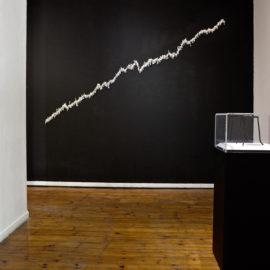 Ingrid Bolton - Crossing the eco-line